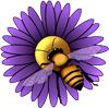 BeeWrap Logo